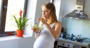 Crevette enceinte : prise de crevettes pendant la grossesse